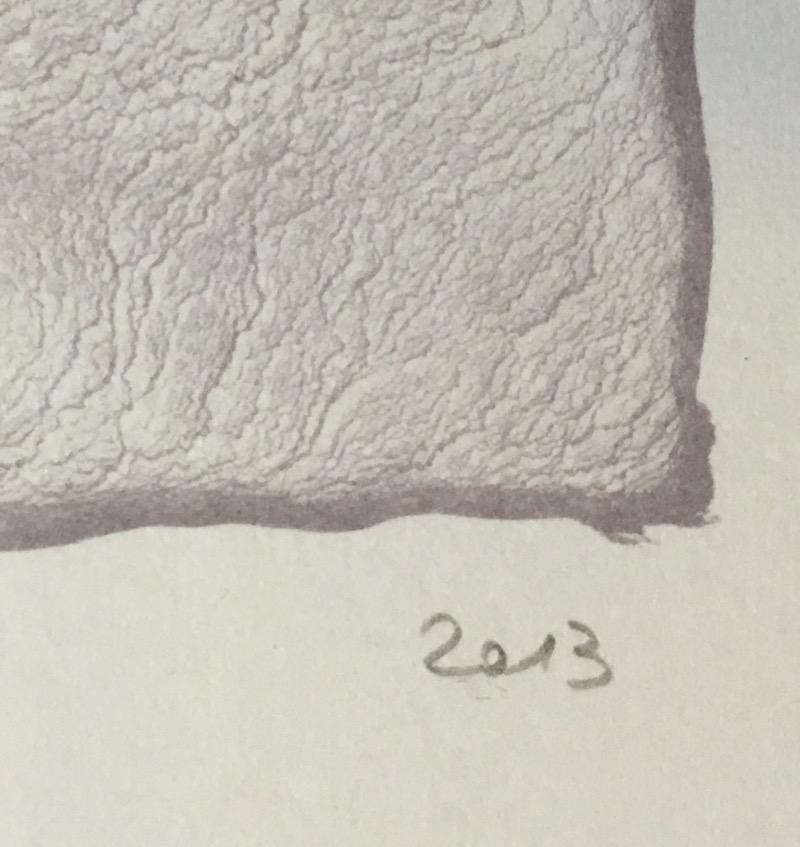 nora schattauer thetys farblithographie 2013 handsigniert und datiert ebay. Black Bedroom Furniture Sets. Home Design Ideas